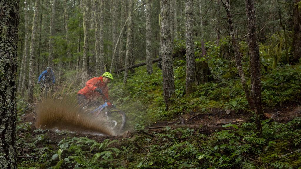 Buehler in Cumberland BC