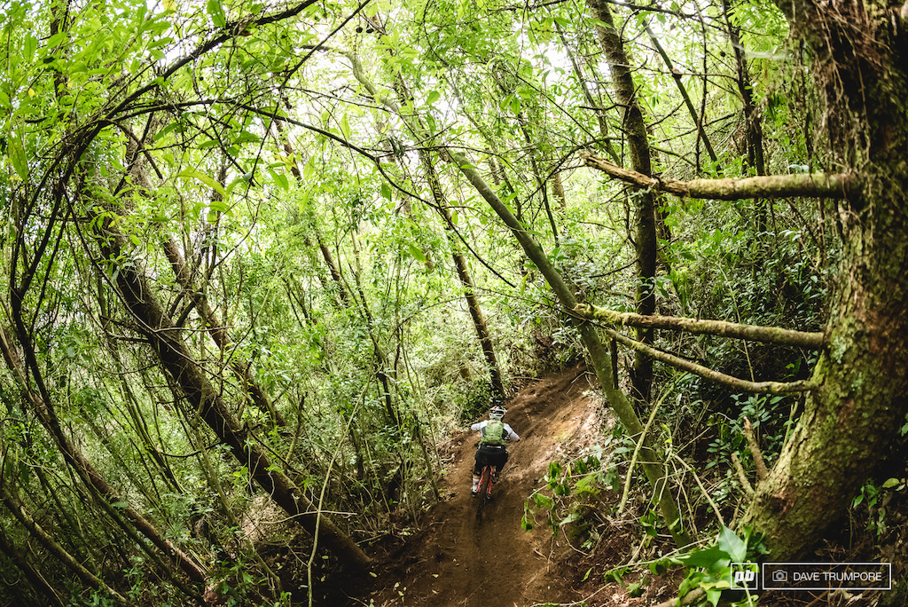 Tracey Mosely drops into the jungle on Stage 1