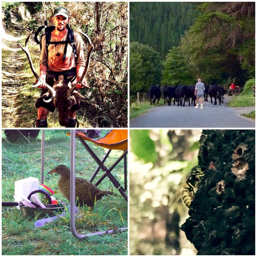 "The Nomads"" Race the Santa Cruz NZ Enduro"