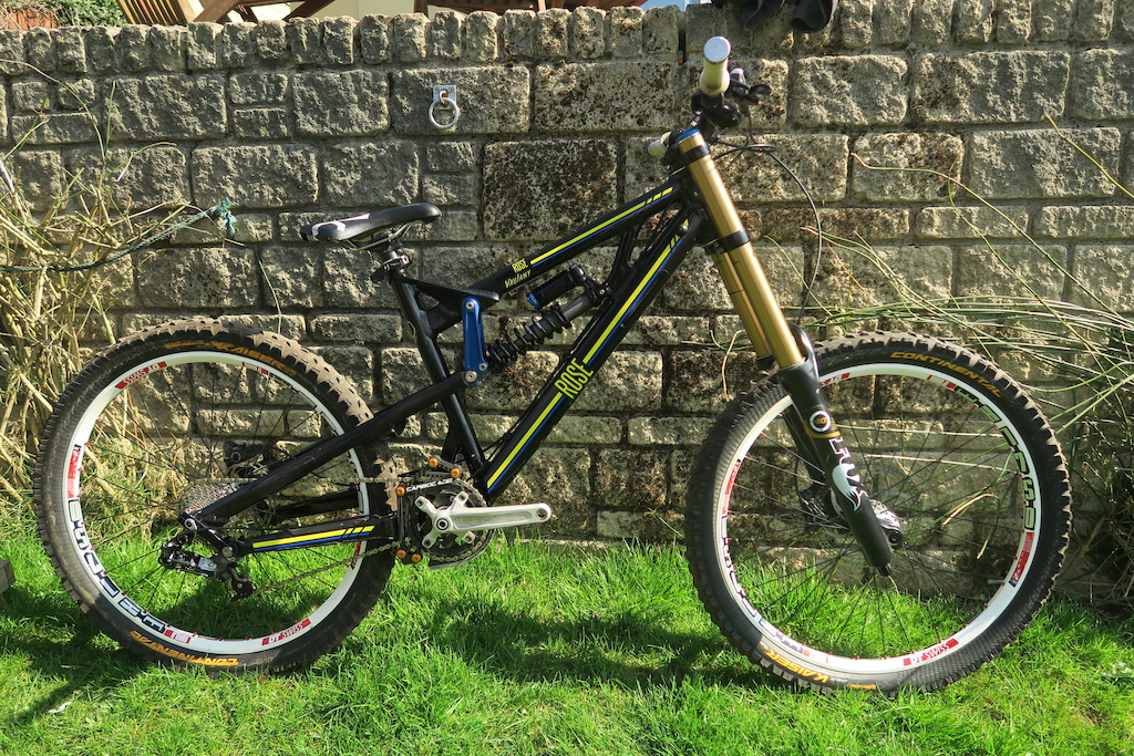 2013 Rose Beefcake Downhill bike