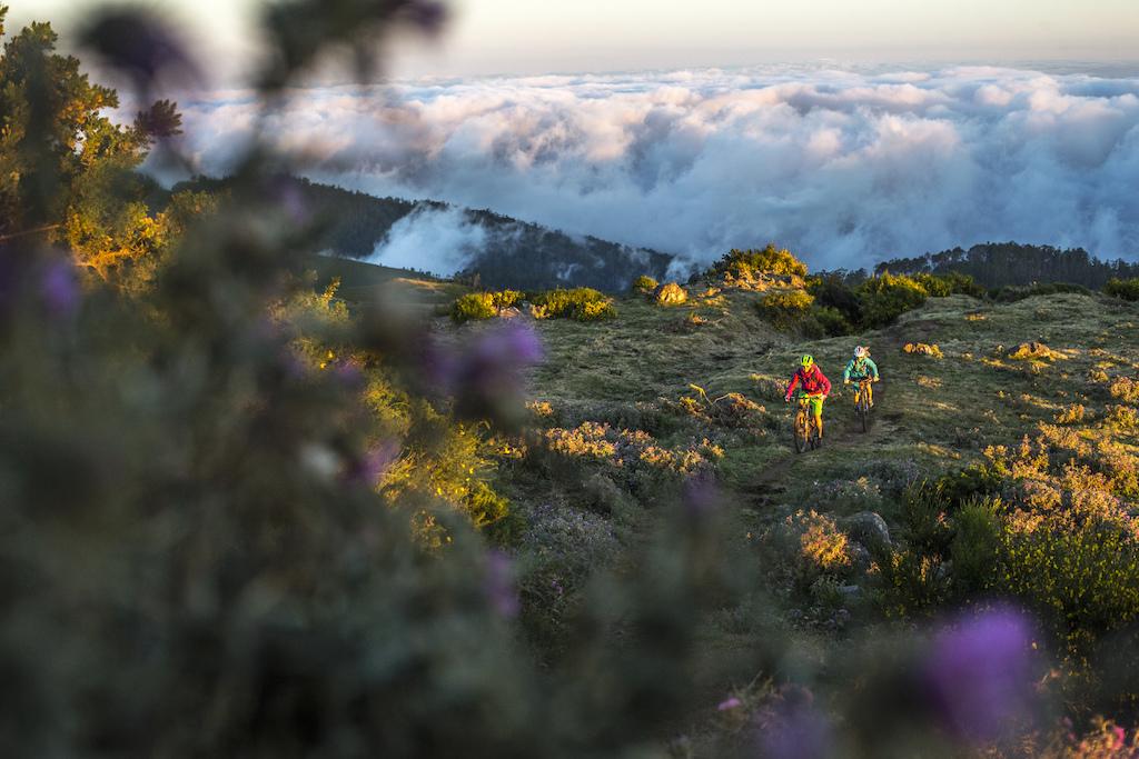 Copyright: Markus Greber Photography - Madeira 2014