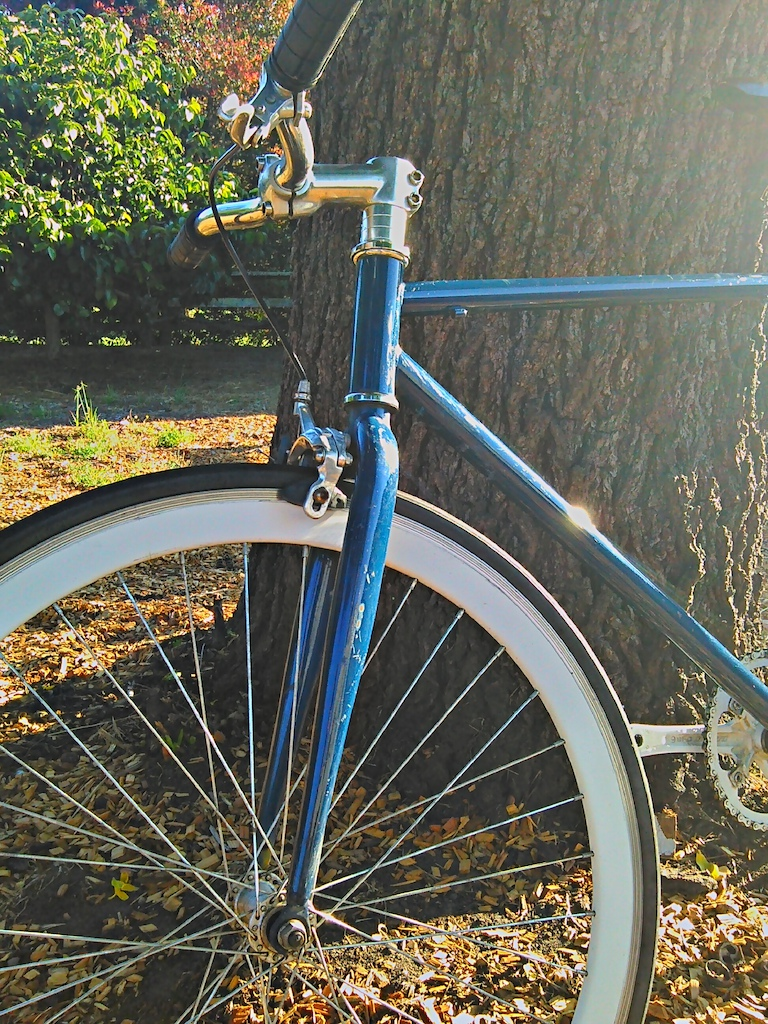 2013 blue/white fixie
