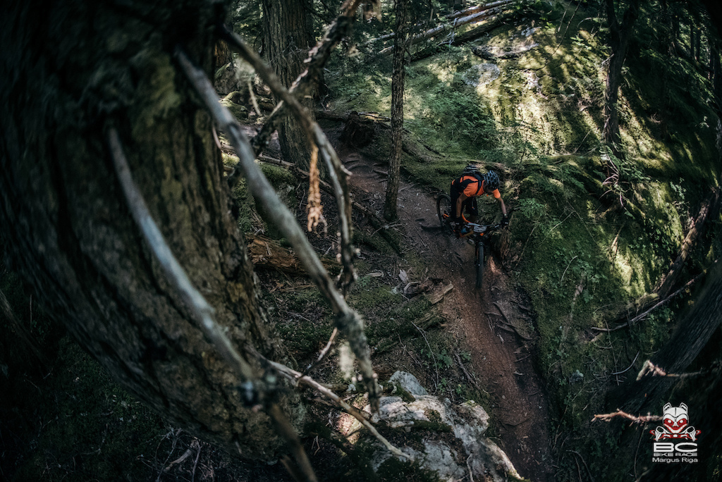 Rene Gozalez navigates his way through the old growth forests.