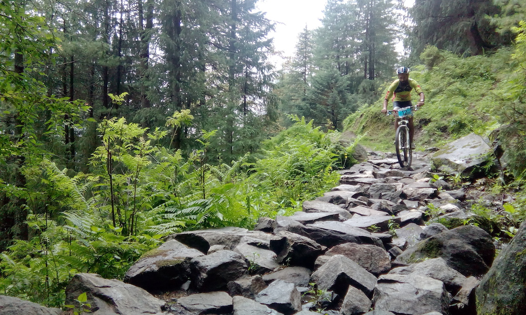 Update and Results - Trails N Dust XC Race Himalayan Mountain Bike Festival 2015 Manali