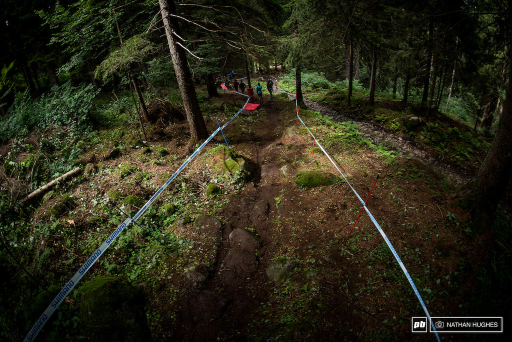 Truly a sight for sore eyes. The Italian forest loam makes for some of the most beautiful terrain on the planet.