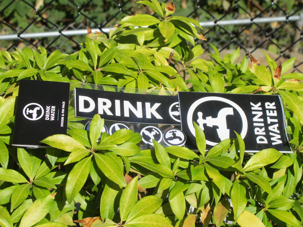 We Drink Water sticker and pin set