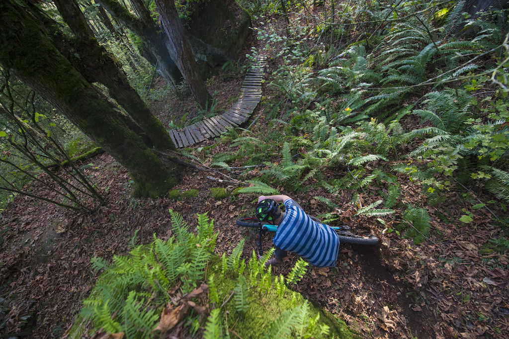 Cannondale Habit Carbon SE review test Photo by Clayton Racicot
