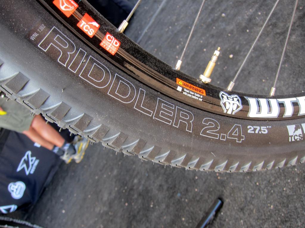 WTB Tires Riddler