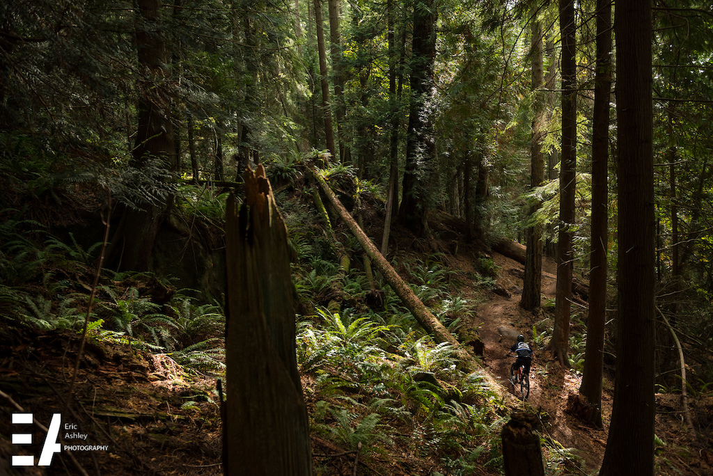 2015 Enduro Of Subdued Excitement at Larrabee State Park.