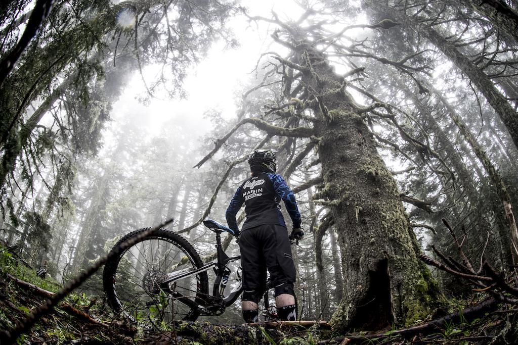Anne riding amongst giants in Oregon s coastal range.