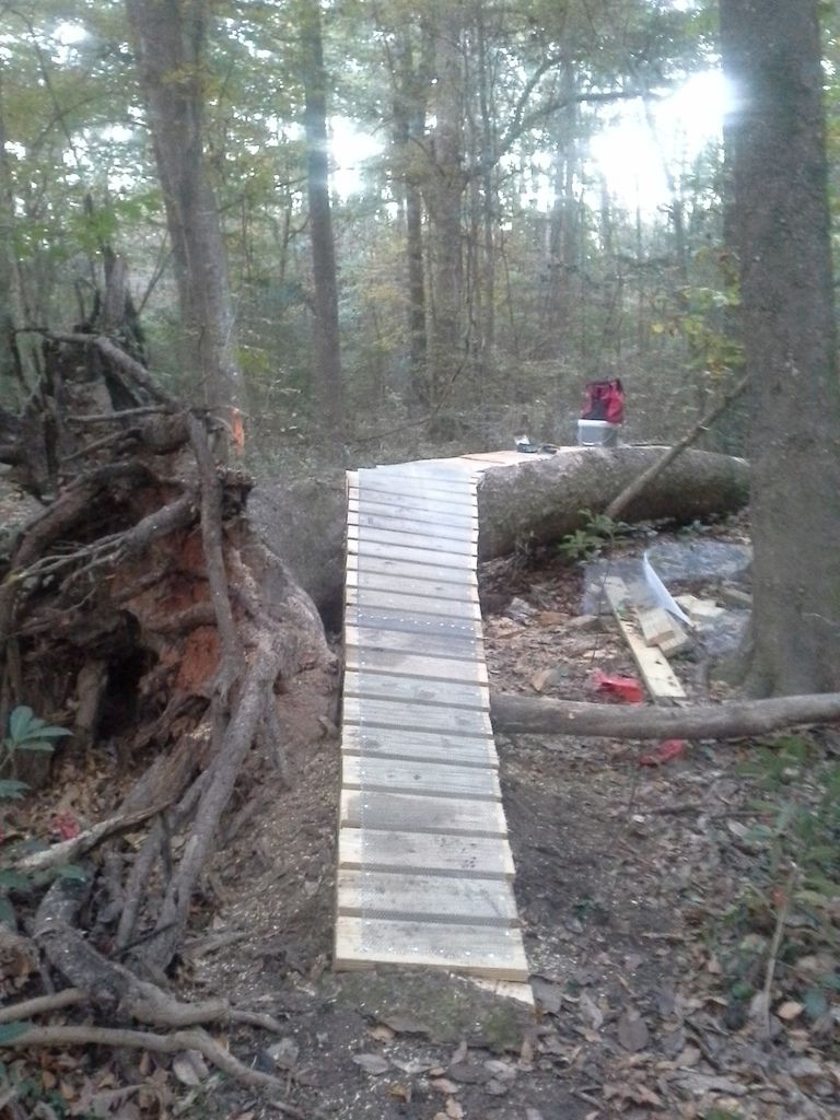 Completed ramp to the top of the log skinny.