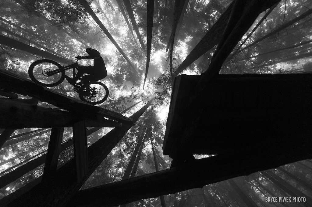 Dylan's sillouette cruising up in the fog high above the forest floor.   Trail building is a crucial, necessary part of our sport, and for me something I've always enjoyed doing. Almost as much as riding my bike or shooting photos.  I didn't put in nearly the amount of time that Dylan did on this trail, but I was fortunate enough to give him a hand on many occasions, including erecting this elevated wall-ride.  Nothing is more rewarding than riding a trail that you have poured all your blood, sweat, & tears into for the first time. While I may not possess the skills or balls big enough to ride this trail. Being able to capture images like this of a rider enjoying something they worked so hard to create is enough of a reward for me.