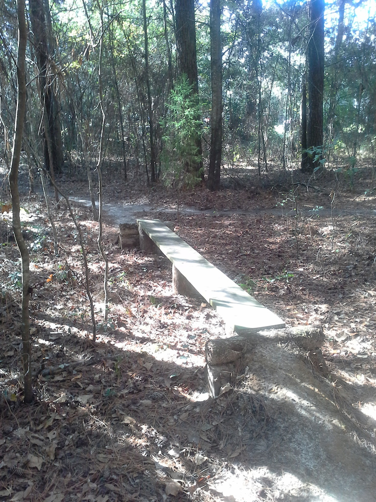 10 ft. long plank skinny with narrow dirt ramps leading on and off .
