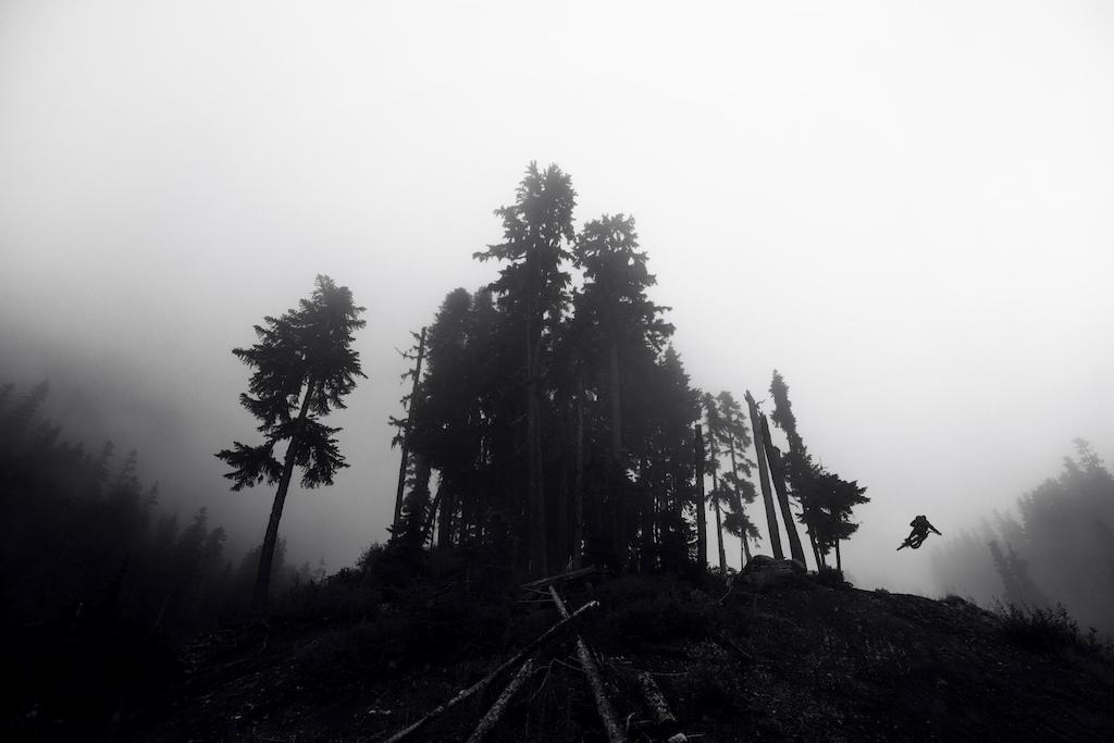 Into the mist. Deep Summer 2015.
