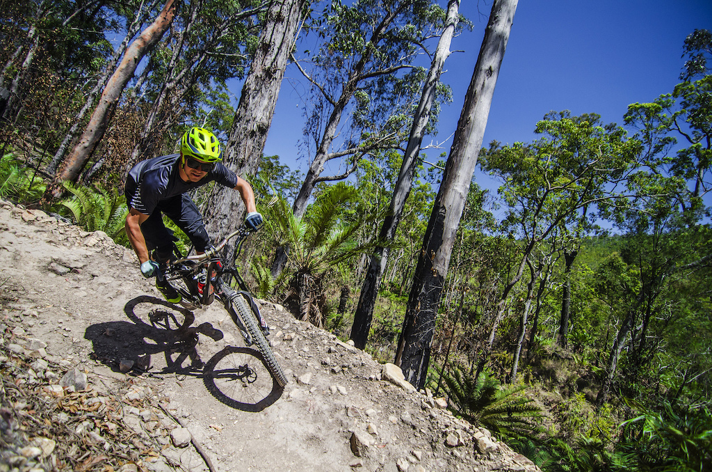 The Atherton Forest Mountain Bike Park has quite an offering of trails winding through the mountain ranges an hour west of Cairns.