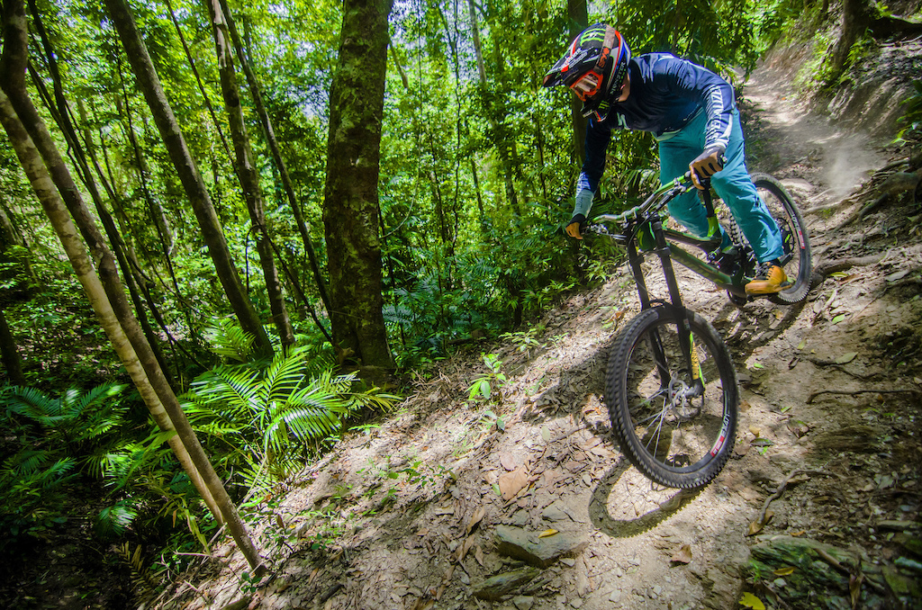 The terrain changes wildy when dropping into the final portion of the course - going from dryer open scrub straight into thick dense rainforest full of vines wait-a-while stinging tree and probably some spiders too.
