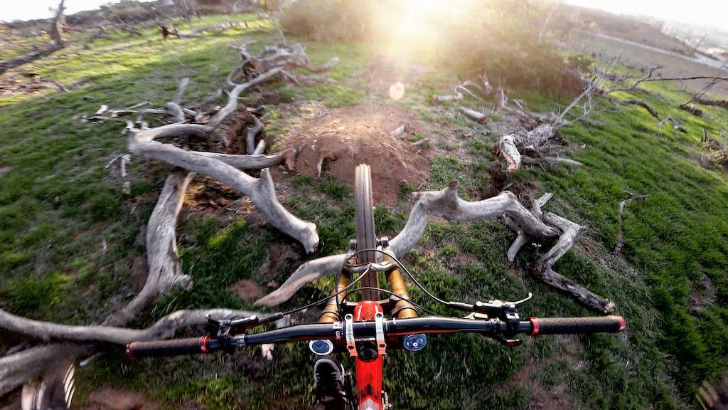 Suicide no hander over a tree that fell on the jump this week. My version of Disnleyland's Soarin' Over California.