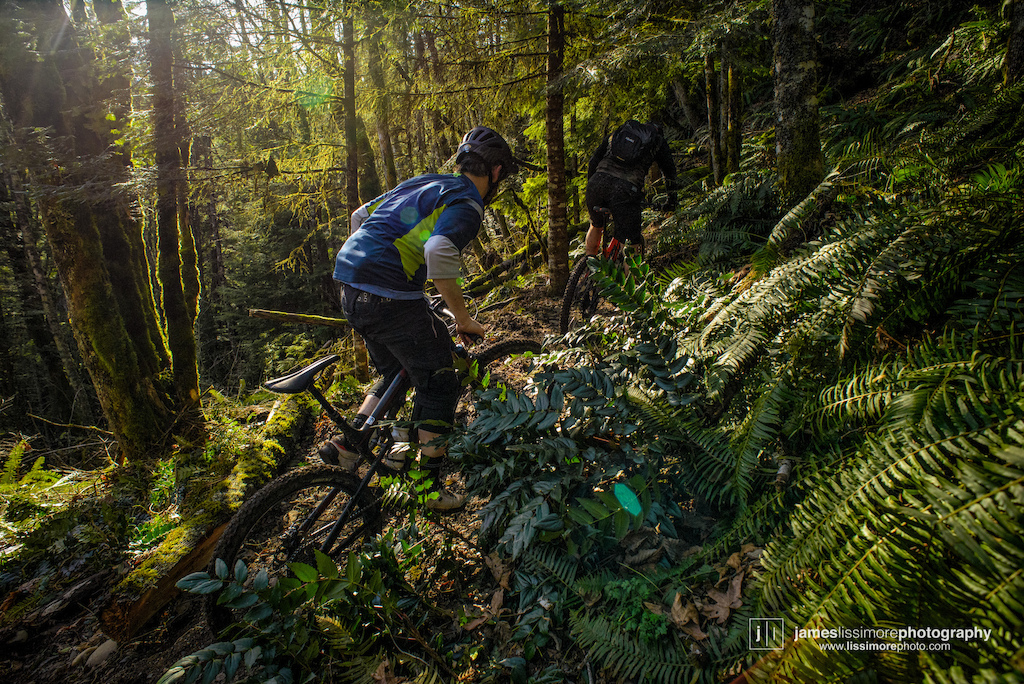 """Bob Jones and Ernie Kliever climbing the new """"Kerry'd Away"""" trail on Vedder Mountain. Chilliwack, BC"""