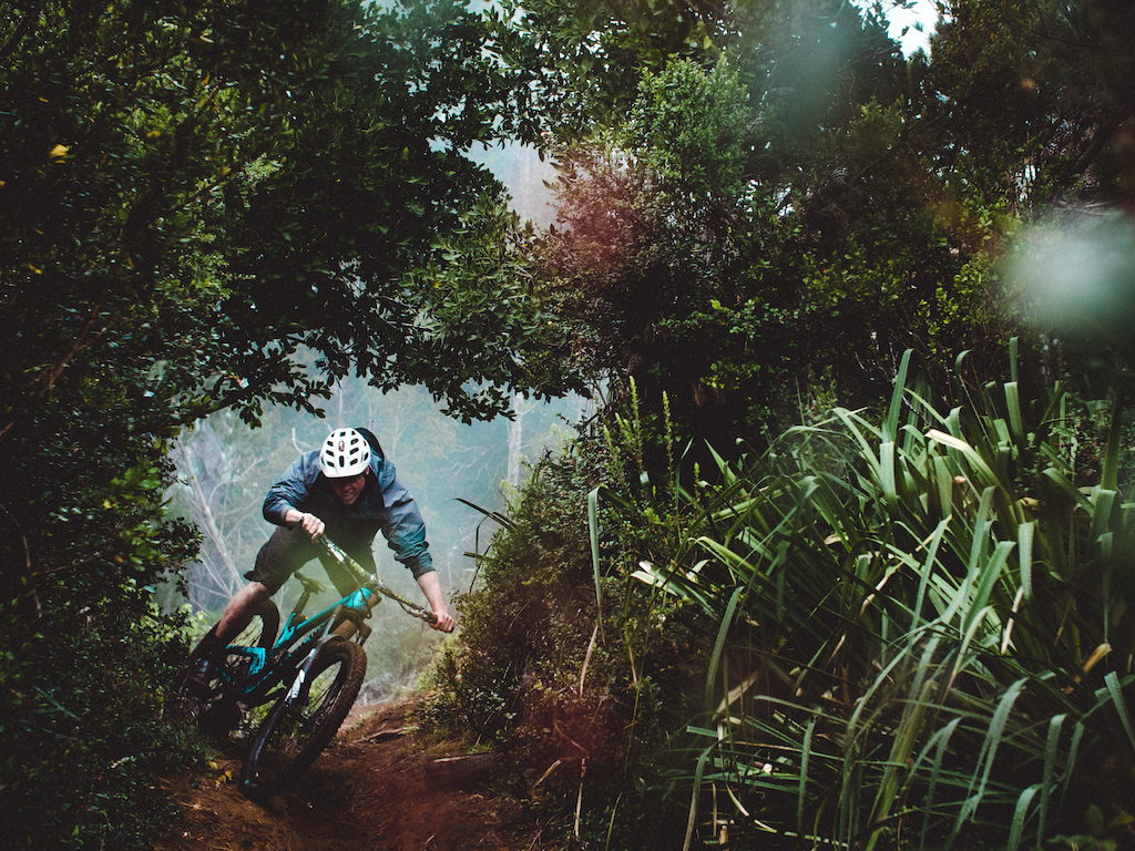 Images for Free Radicals take on the South American EWS Races blog.