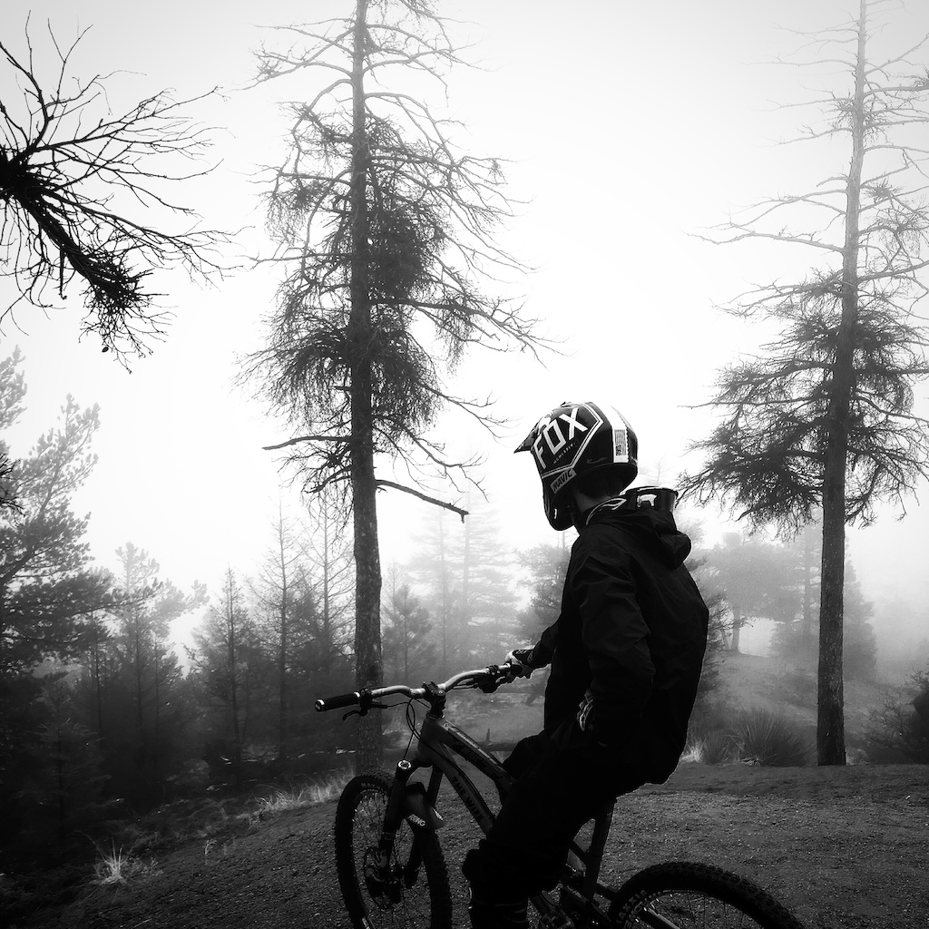 Riding in the fog is surreal. Prime conditions right after some snow followed by rain. Not too shabby for a picture taken in the spur of a moment by an iPhone.