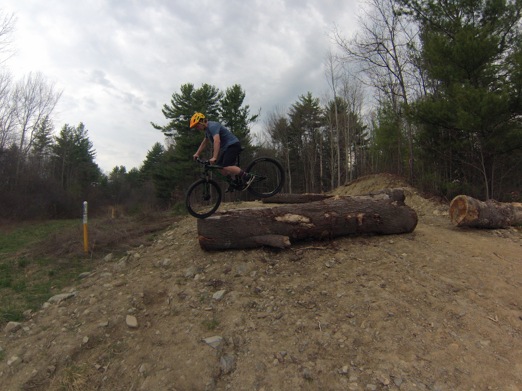 Endo on the end of a log!