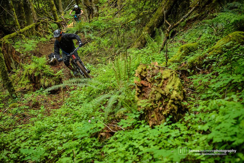 Dustin Adams. Vedder Mountain. Chilliwack BC.