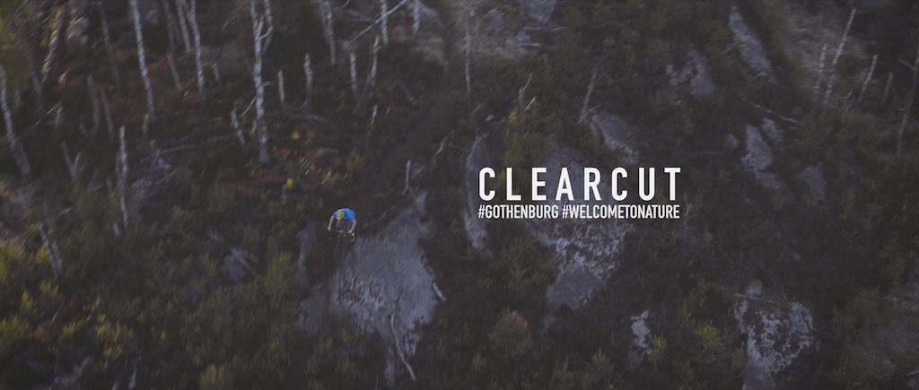 Clearcut logo