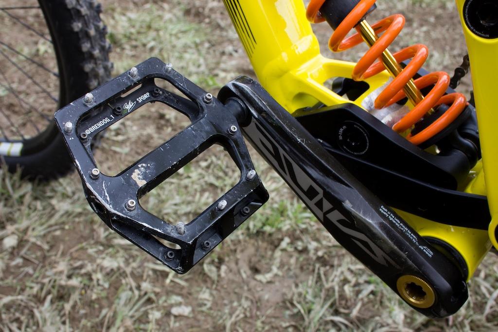 Flat pedals win medals Fran uses Brendog 1 signature DMR Vault