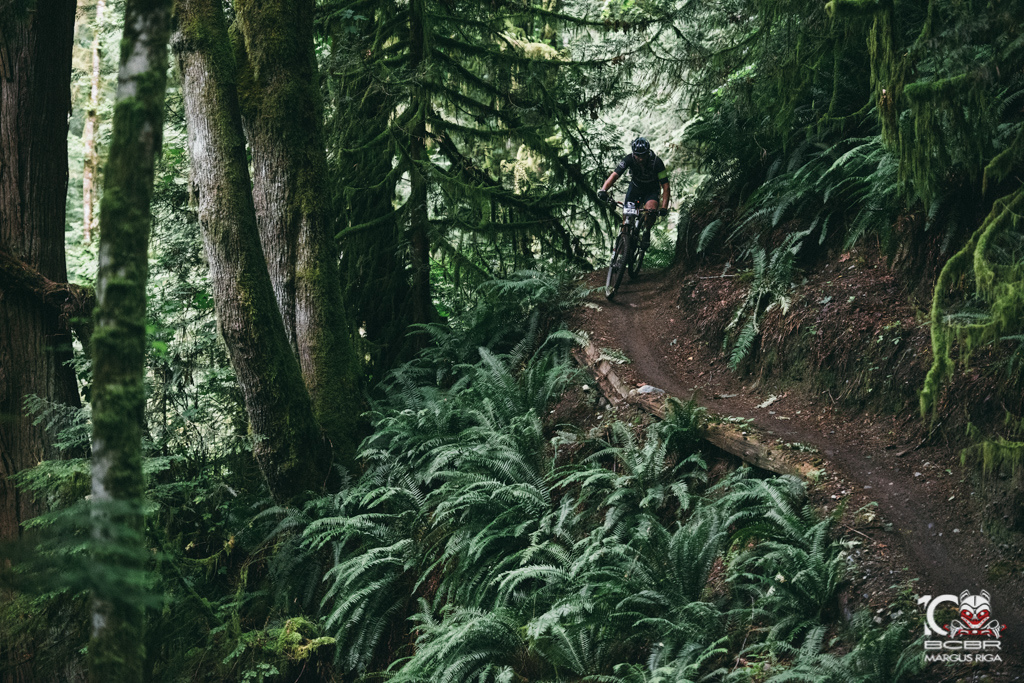 It might be steep, but the ferns will slow your fall.