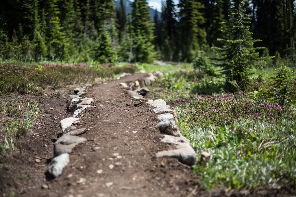 Building sustainable all weather trail in the alpine.