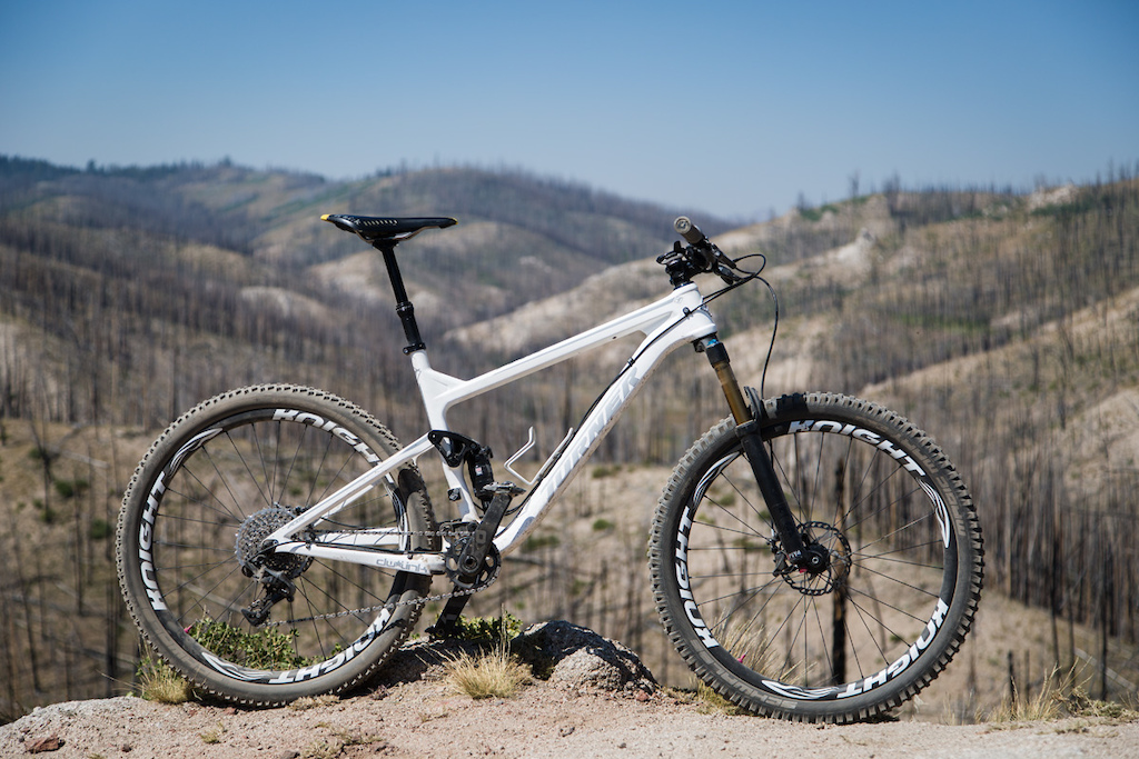 The Turner Flux The Singletrack Ripper