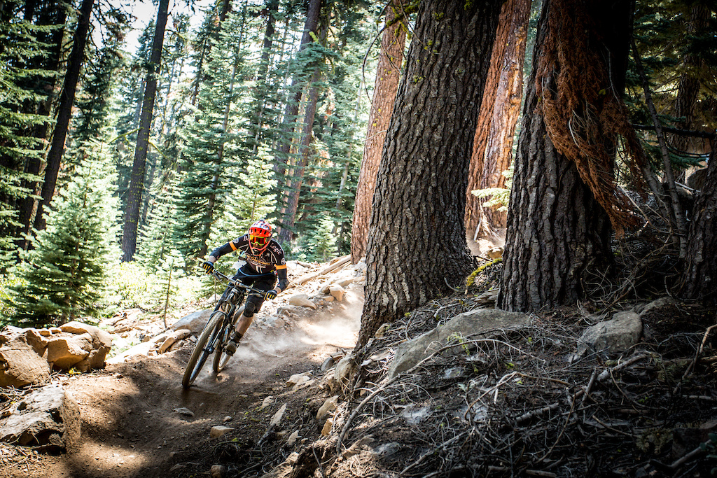 Big Trees served as part of stage 2 and it lived up to its name.