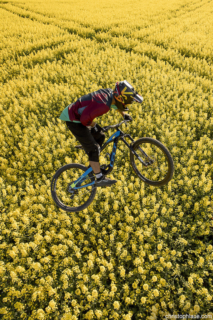 Amir Kabbani is flying over a canola field close to Boppard, Germany