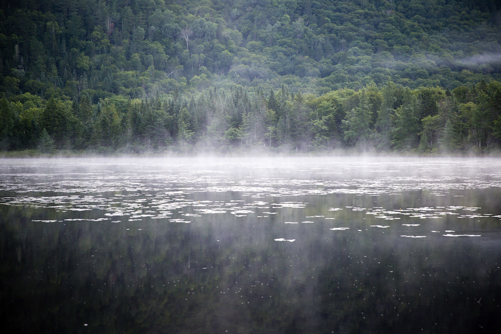 Morning lake mist. PHOTO: Ben Gavelda
