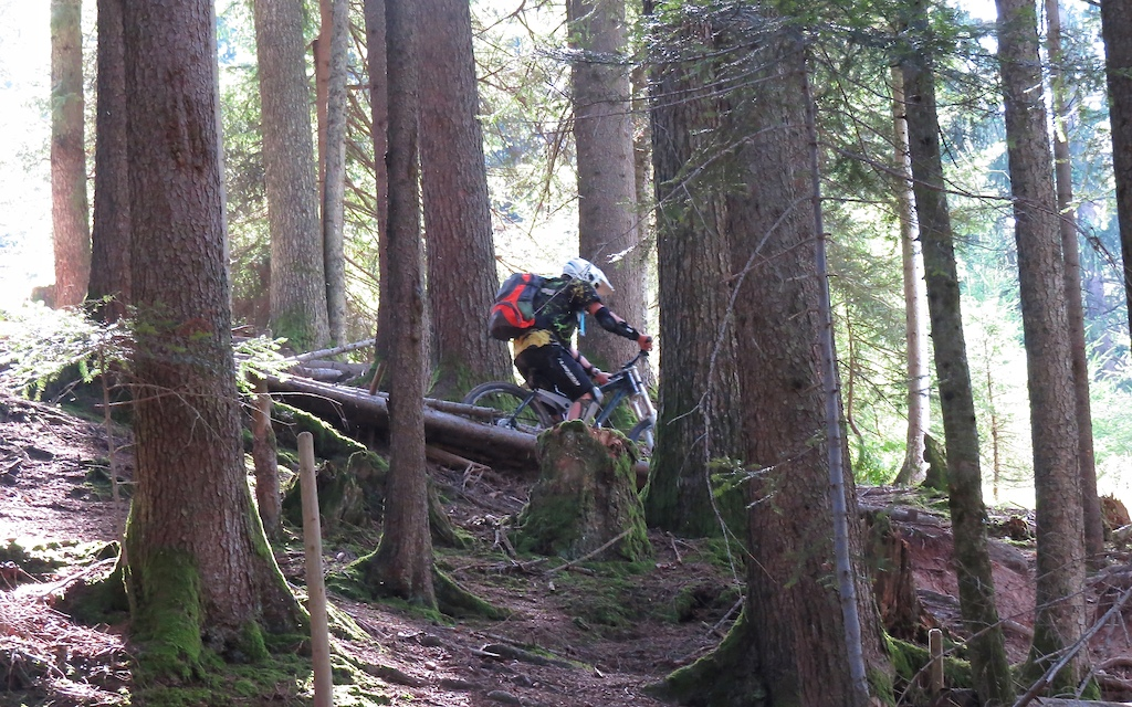 """in the 3. section, easy beginning but after some meters many big roots and a lot of narrow turns ...  a little bit hard for """"Parki"""", but I did it without any crash. I'm sure this section is not so nice for beginners!"""