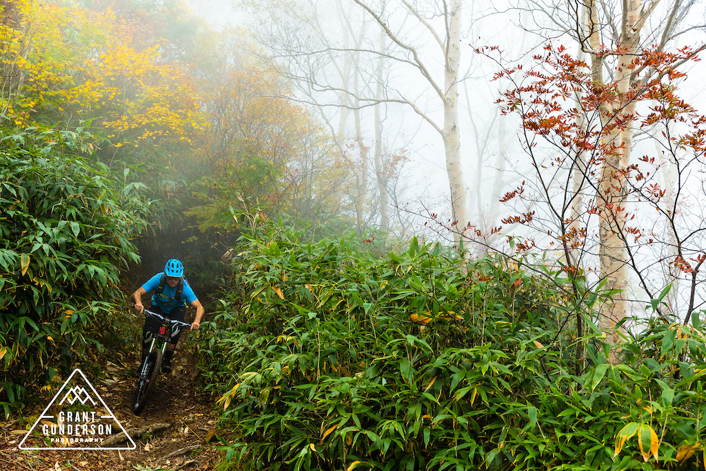 KC Deane Mountain Biking in Myoko