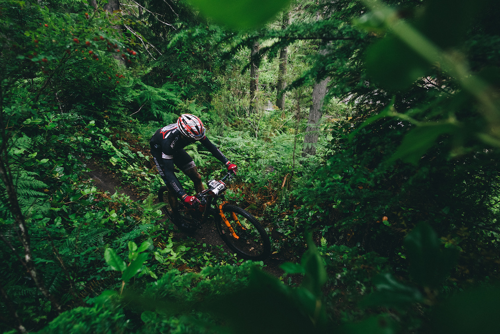 Stephen Ettinger finds himself in the jungle of British Columbia. Photo Margus Riga