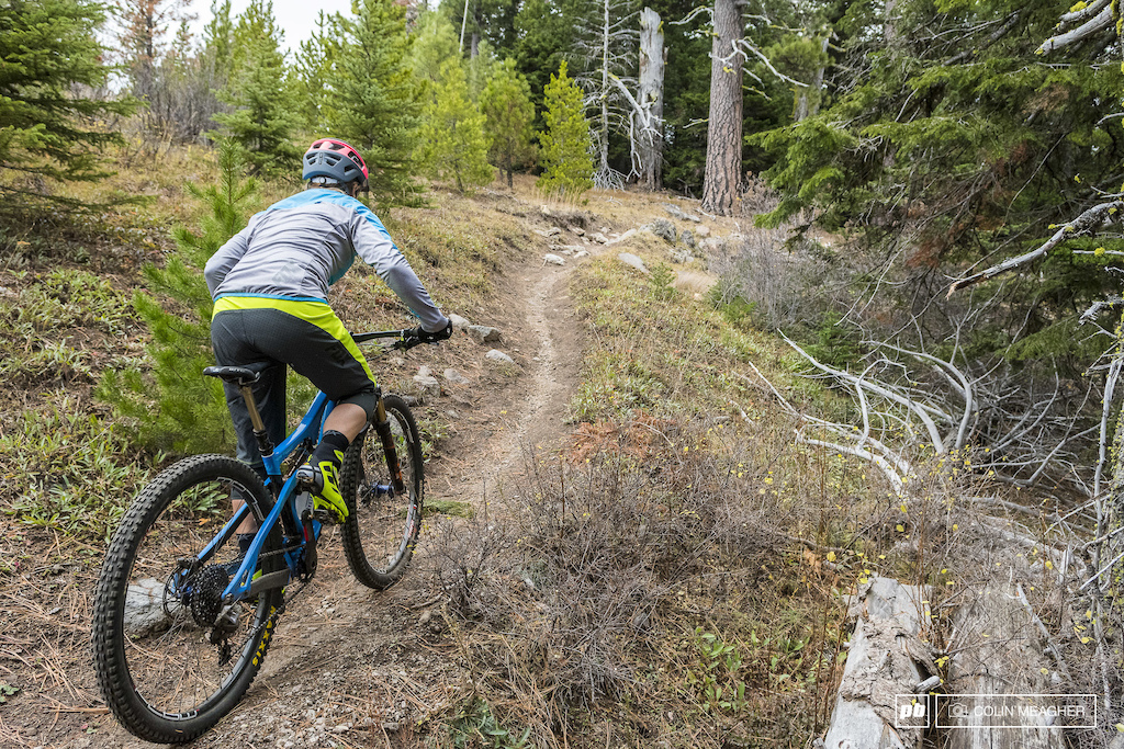 Riding the trails on the 44 Road near Mt Hood
