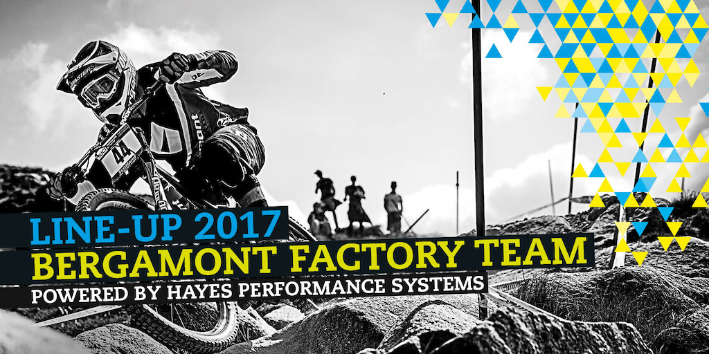 Bergamont Factory Team 2017
