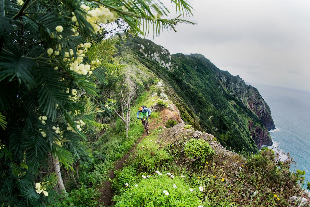 East coast flower ridge