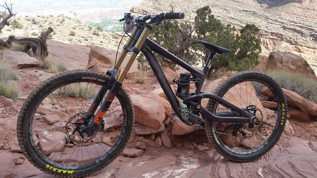 Gambler at the top of Portal Trail in Moab