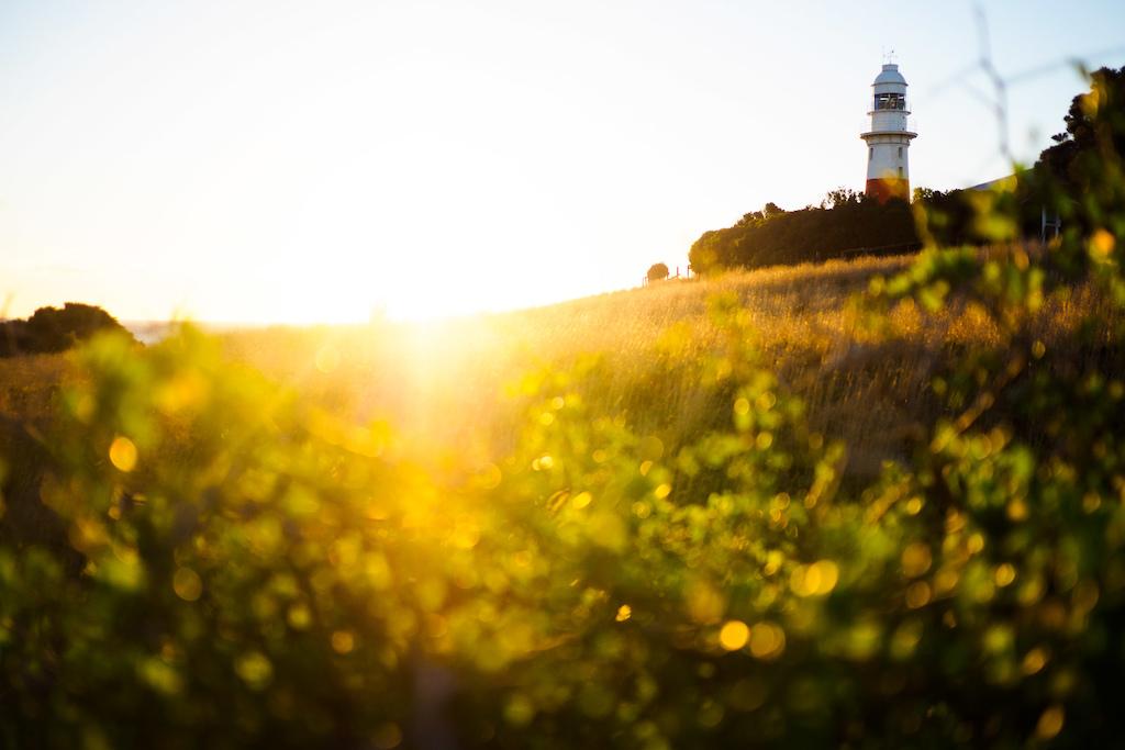Lighthouse - daytime  PC: Max Schumann