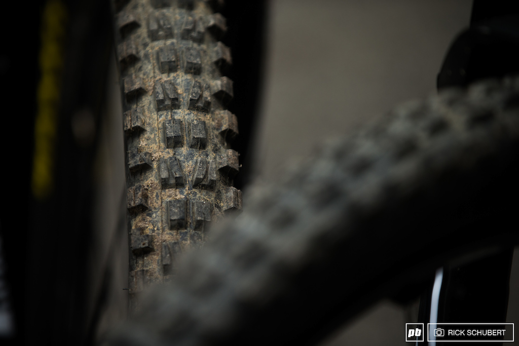 Most of the rider used a softer compound to get the maximum grip in the rooty sections