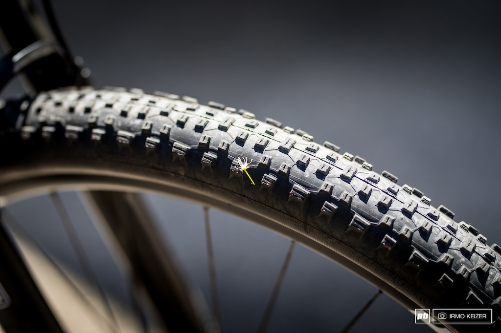 Schwalbe s Racing Ralphs are a popular choice among riders.