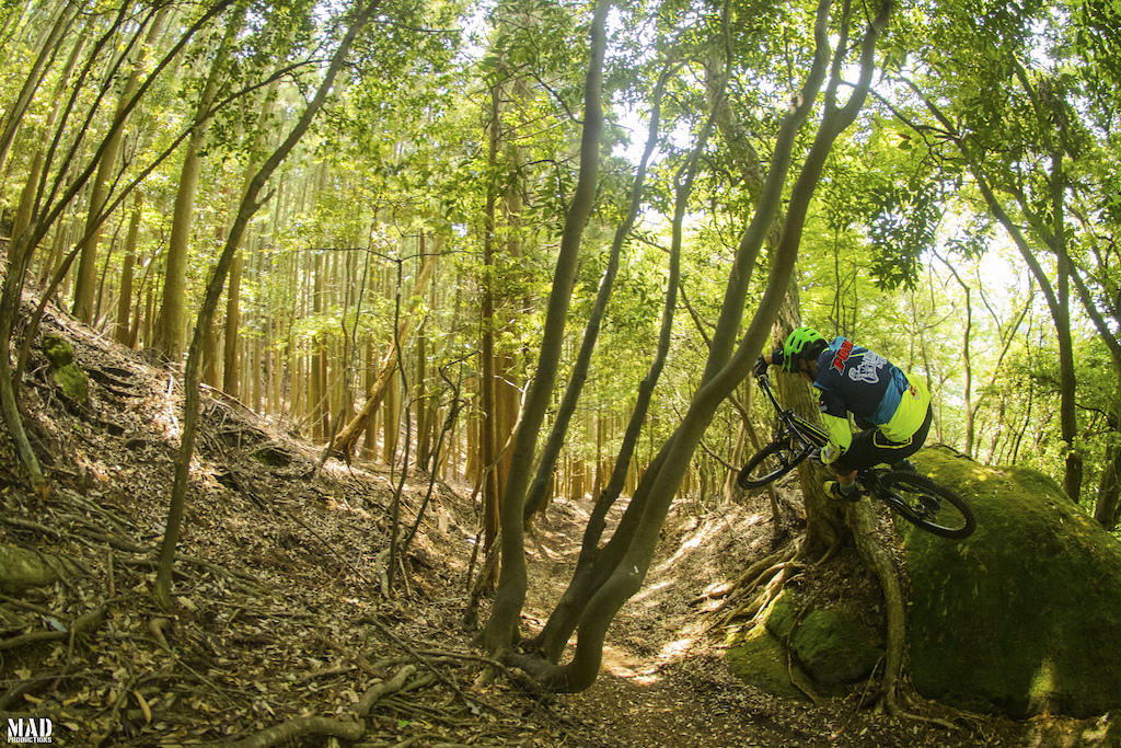 Throwback to riding Yamabushi Trail Tour/西伊豆古道再生プロジェクト singletracks in Japan. MADproductions boy, Emanuel Pombo, couldn't get his wheels on the ground...