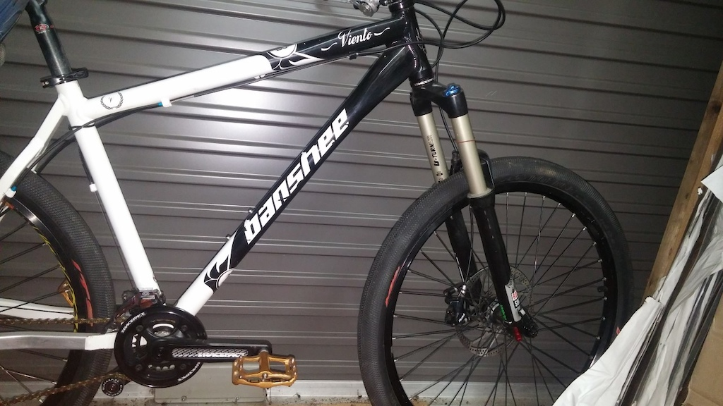 2010 Large hardtail