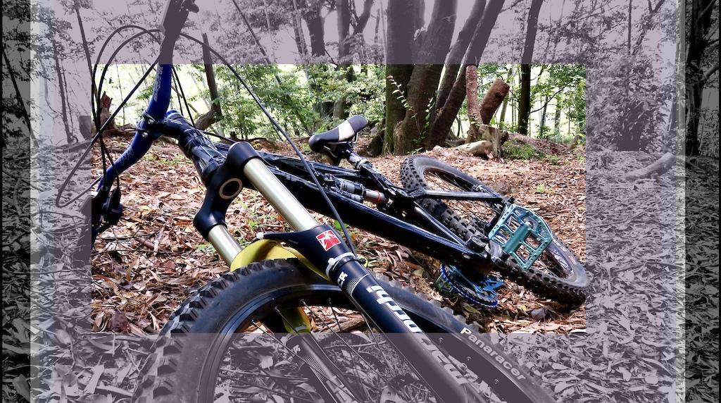 Niko's Bike