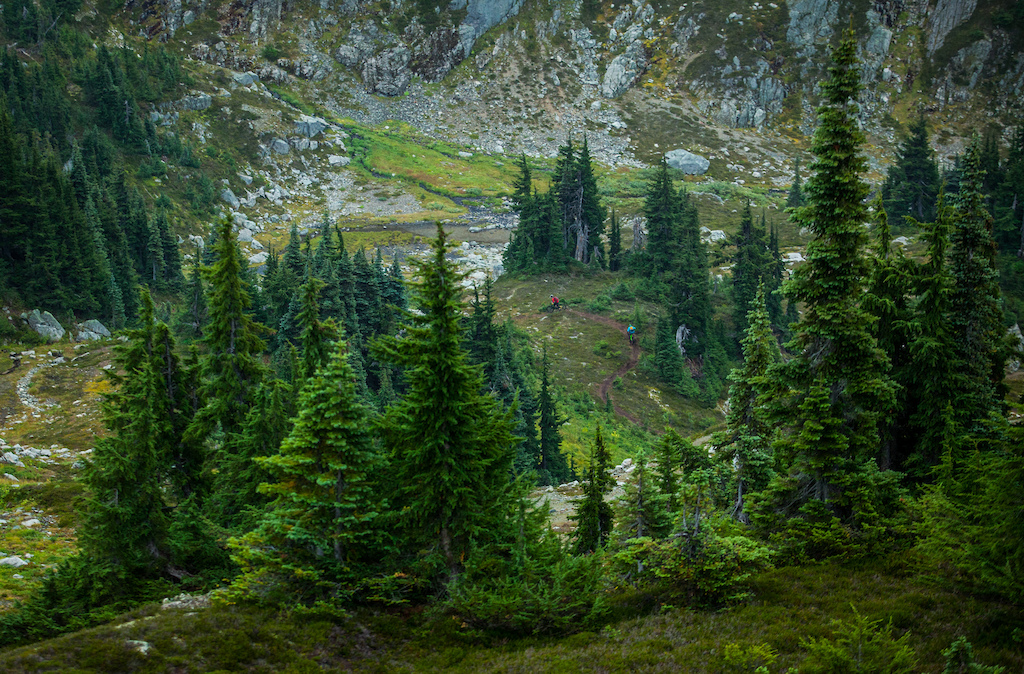 Lord of the Squirrels alpine trail