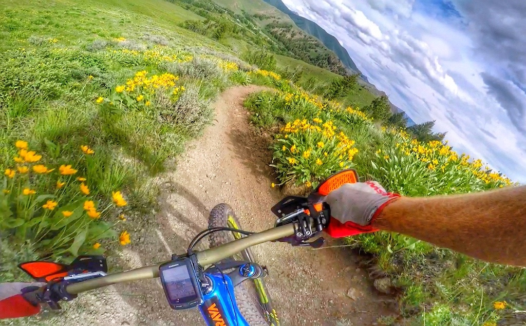 Springtime in Sun Valley is a colorful and fragrant MTB experience.