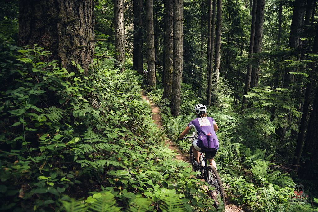 Looking for singletrack? The trails around Sechelt have it in abundance. Come her and get tickled by the foliage.